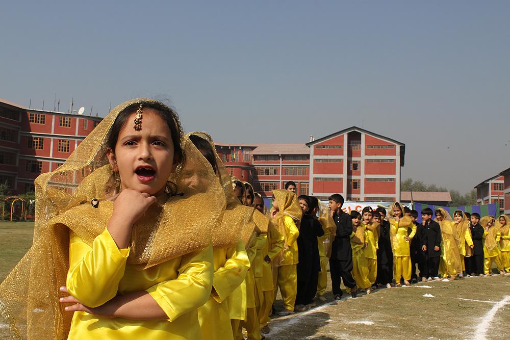 Punjabi folk dance performance
